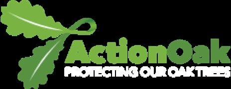 Action Oak